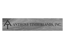 Anthony Timberlands